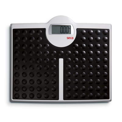 seca 813 - High capacity digital flat scale for individual patient use #0