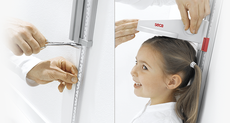 seca 216 - Measuring rod for children and adults #3