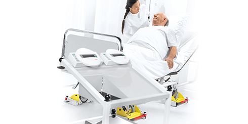 Bed and dialysis scale